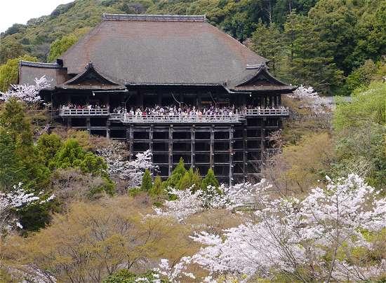 清水の舞台 桜