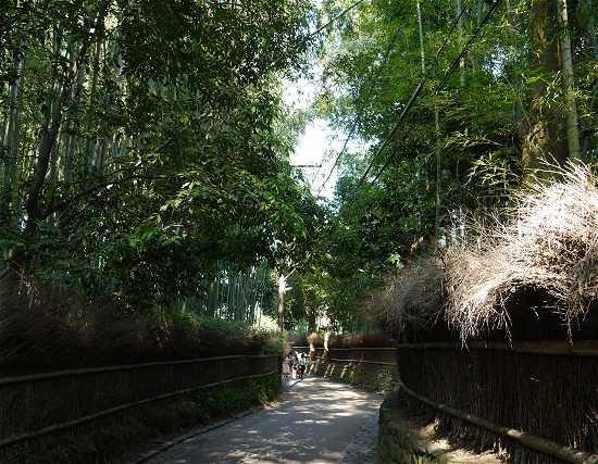 竹林の道 入口
