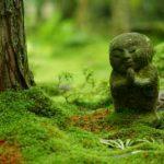 京都市郊外のおすすめ観光スポット