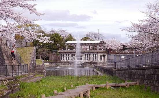蹴上インクライン 桜と噴水