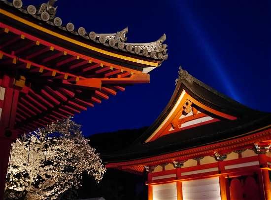 清水寺サーチライト 青い光