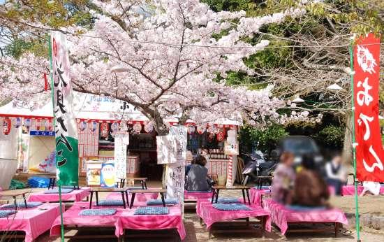 円山公園 食事